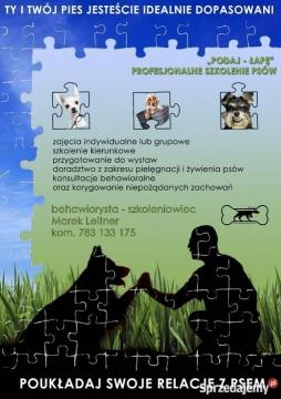 szkolenie-psow-przemysl-podkarpackie-481449260